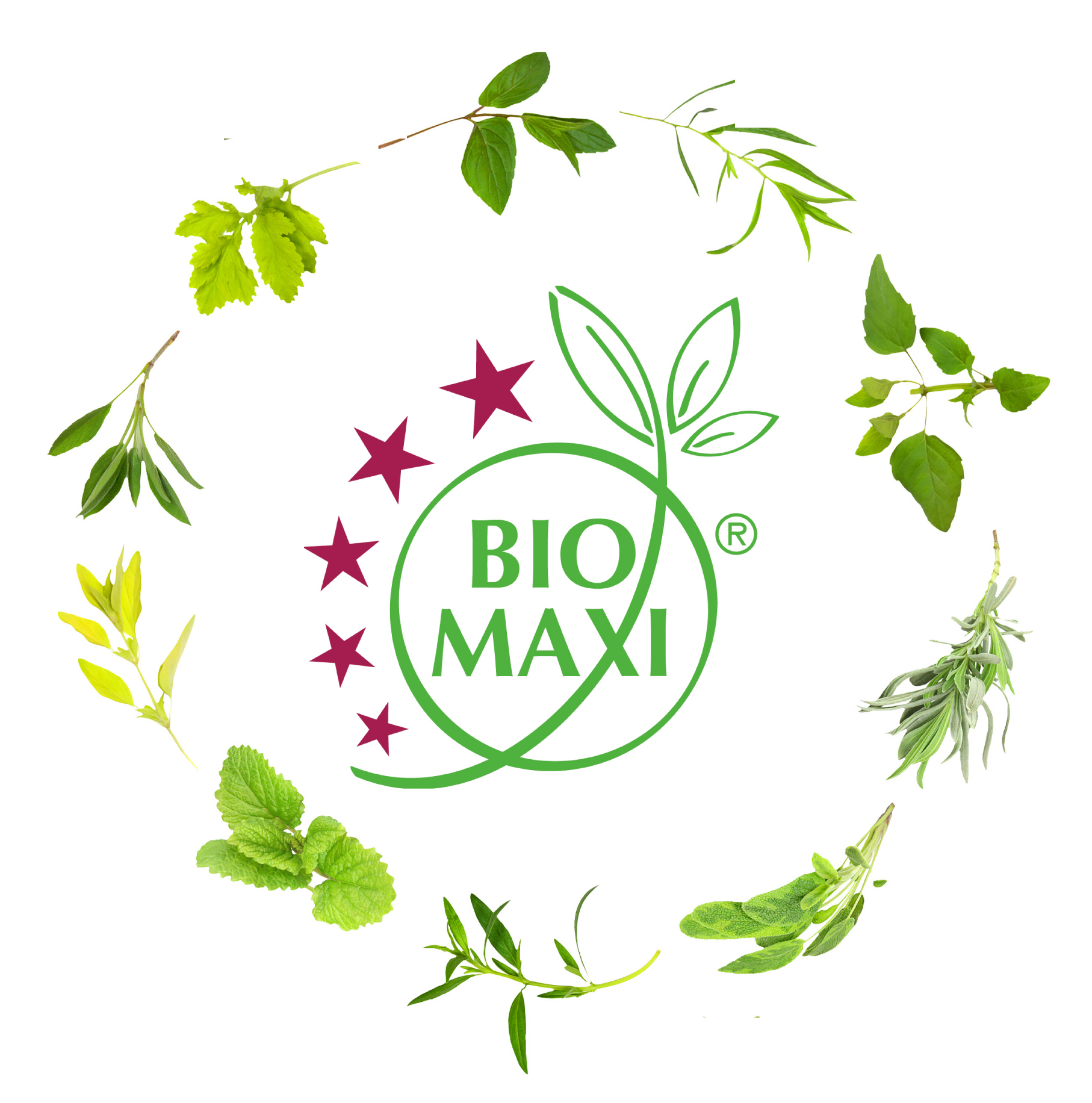 Bio Maxi